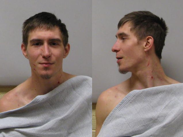 Man Charged with Stabbing Dog and Domestic Violence