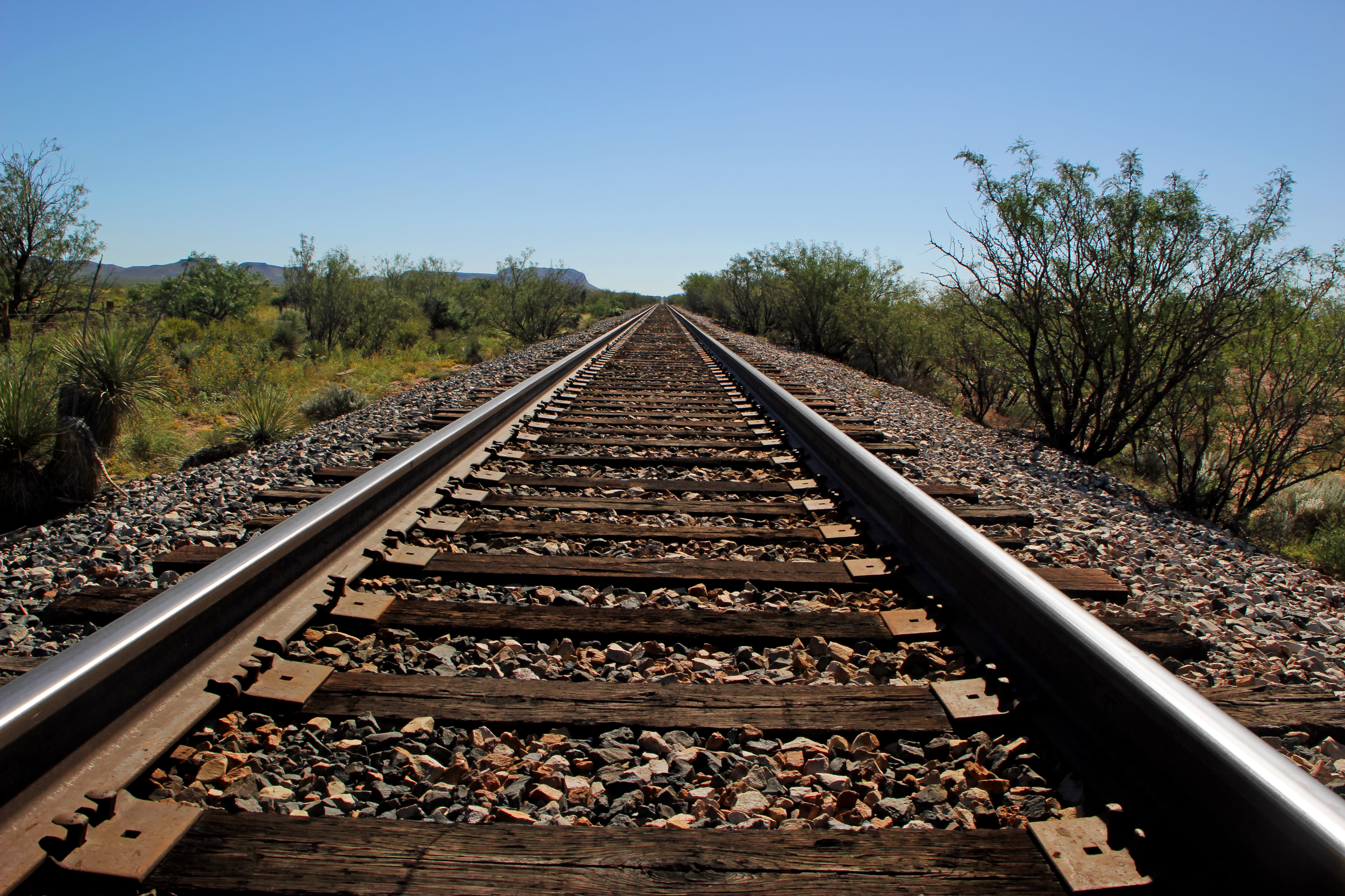 Fatal Pedestrian / Train Accident